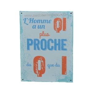 PLAQUE METAL HUMORISTIQUE 15 x 20 cm  LE QI DES HOMMES