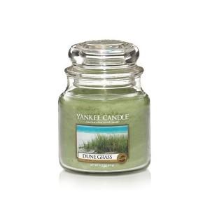 http://www.meublesduchalet.com/610-thickbox/moyenne-jarre-dune-grass-plante-de-dunes.jpg