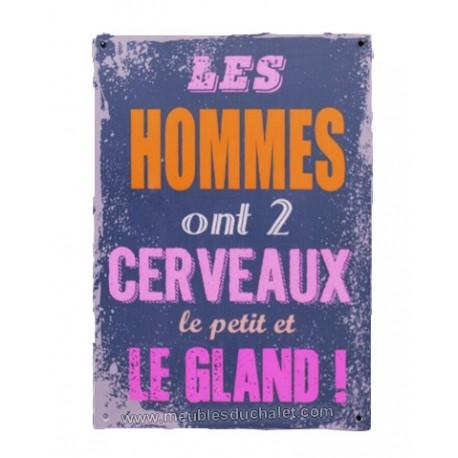 PLAQUE METAL HUMORISTIQUE 15 x 20 cm LES CERVEAUX DE L HOMME
