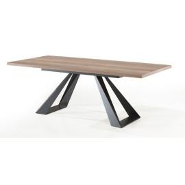 Table rectangulaire fixe pieds métal 2m20 - Cooper